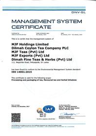 Environmental Management System Standard